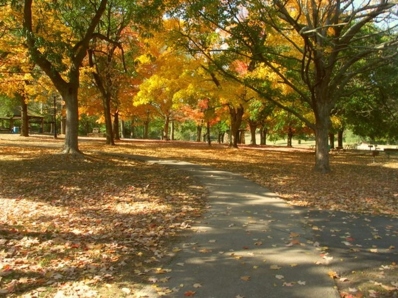 The Springfield area offers many trails, hiking, and bicycling opportunities